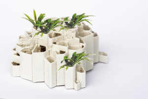 3D-Druckmodelle_2262_2_pflanzen